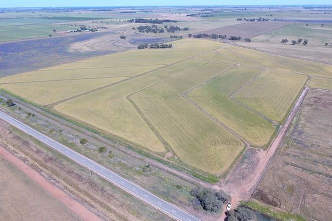 "Picture of ""Part Farm"" 1078, MURRAMI NSW 2705"