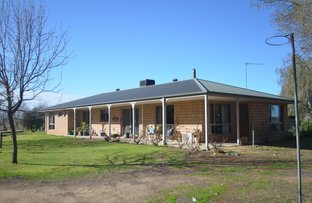 Picture of 1501 Boals Road, Numurkah VIC 3636