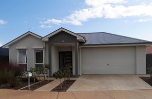 Picture of 17 Broadwater Place , Blakeview SA 5114