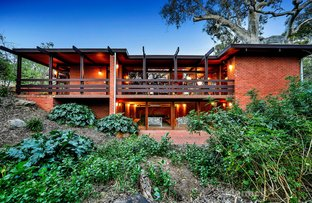 Picture of 20A Ayr Avenue, Torrens Park SA 5062