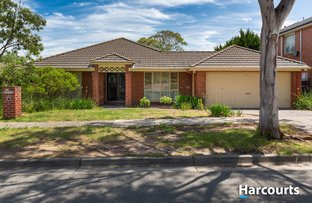 Picture of 10 Chauncy Way, Lynbrook VIC 3975