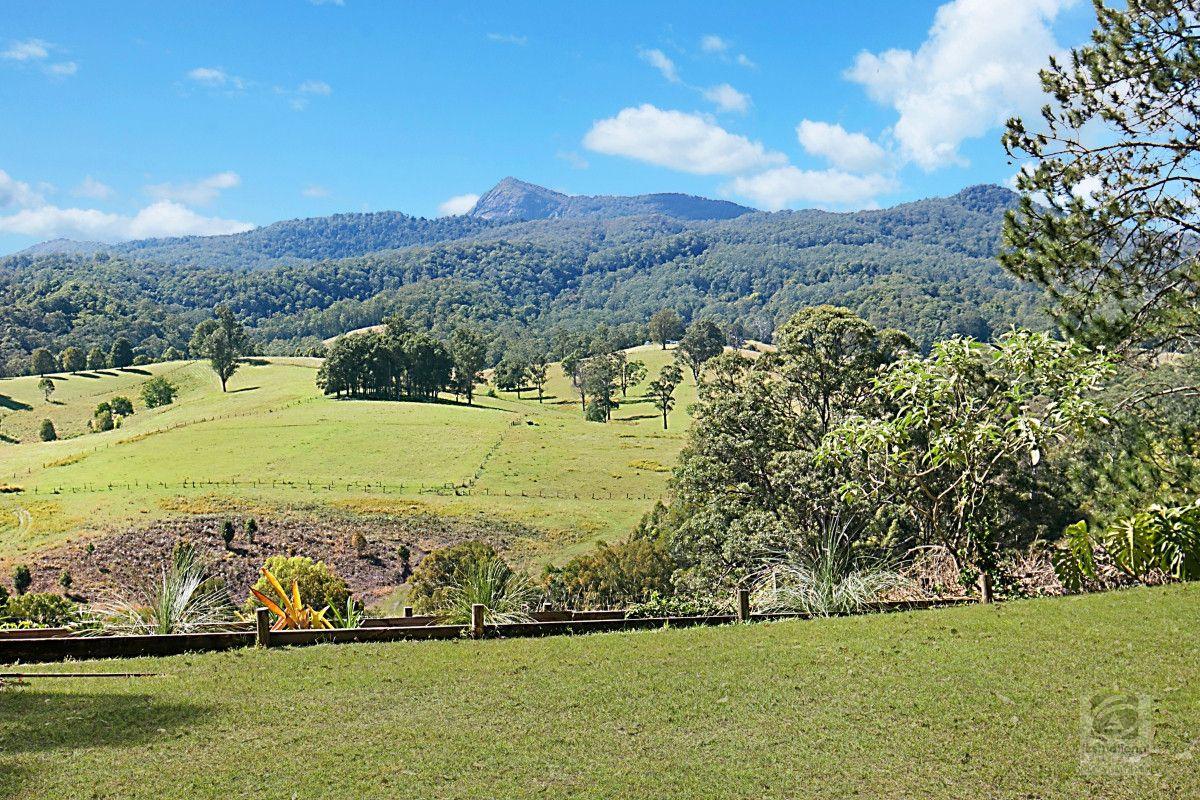 1640 Byrrill Creek Road, Brays Creek NSW 2484, Image 1