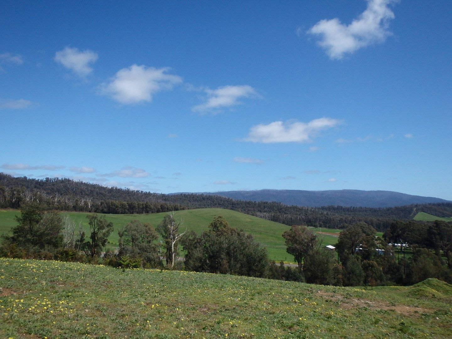 Lot/8 Retreat Road, Marysville VIC 3779, Image 0