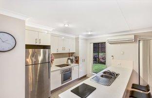 19 Treeline Circuit, Upper Coomera QLD 4209