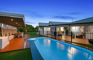 Picture of 1 Willaroo Court, Wurtulla QLD 4575