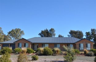 Picture of 120A Calarie Road, Forbes NSW 2871