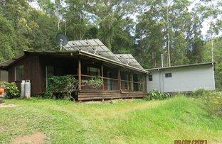 Picture of 682 Kalang Road, Bellingen NSW 2454