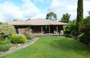 Picture of 203 Lake St, Edenhope VIC 3318