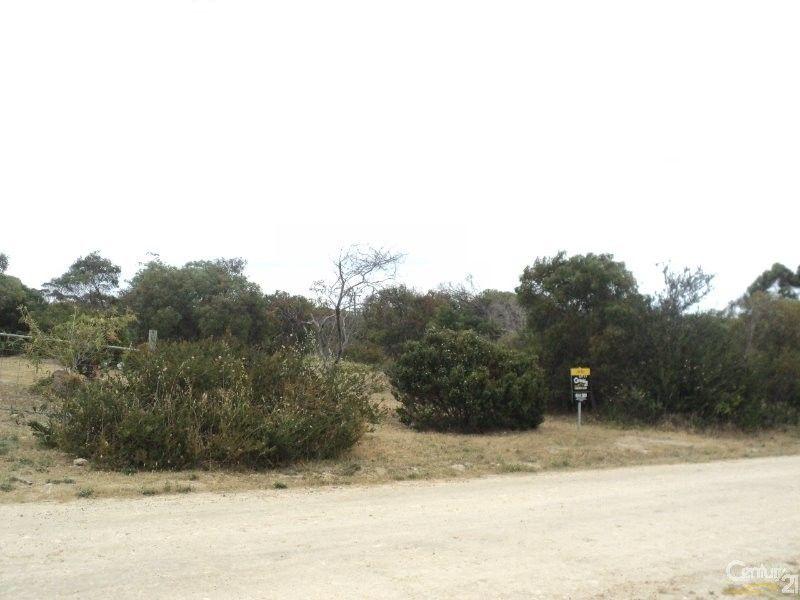 33 Collins Crescent, Baudin Beach SA 5222, Image 2