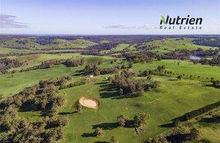 Picture of ' Winniwood Farm', Winnejup WA 6255