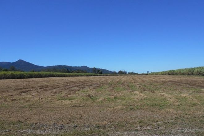 Picture of 4 Scott's Road, LANNERCOST QLD 4850