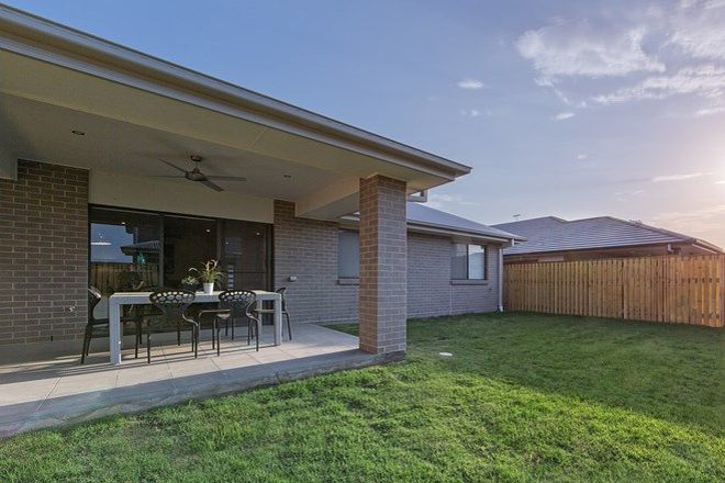 Picture of 12 Crusade Street, NEWPORT QLD 4020
