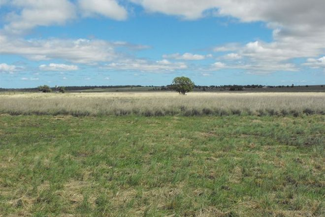 Picture of Lot 1 Back Plains Road, BACK PLAINS QLD 4361