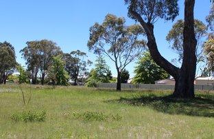 Picture of 67 Abbott Street, Glen Innes NSW 2370