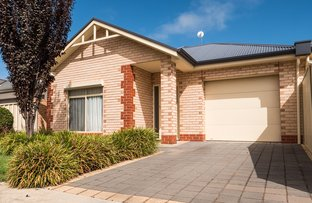 Picture of 14A Drummond Avenue, Findon SA 5023
