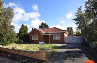Picture of 31 Scottish Avenue, Clovelly Park SA 5042