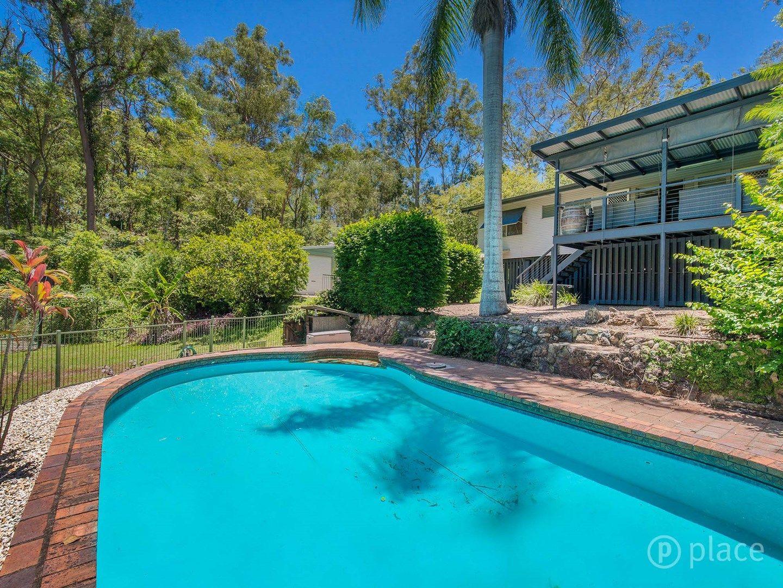 41 Vyner Street, Pinjarra Hills QLD 4069, Image 0