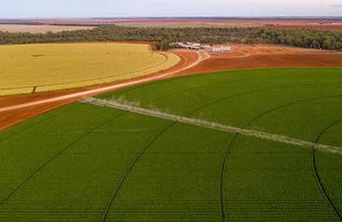 Picture of Lachlan River Road, Hillston NSW 2675