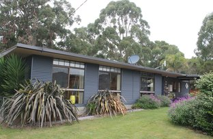 Picture of 35-37 Banksia Avenue, Sisters Beach TAS 7321