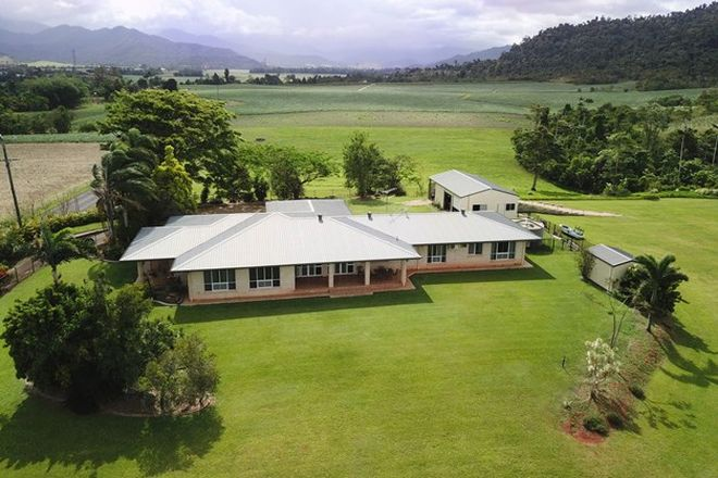 Picture of 488 WALTER LEVER ESTATE ROAD, WALTER LEVER ESTATE QLD 4856