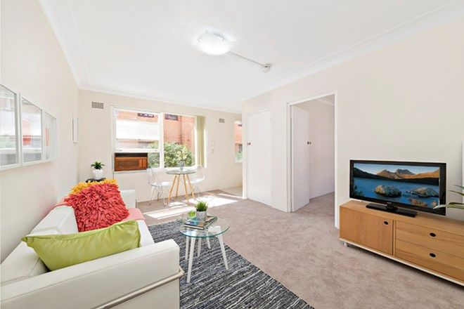 Picture of 6/7 Cecil Street, ASHFIELD NSW 2131