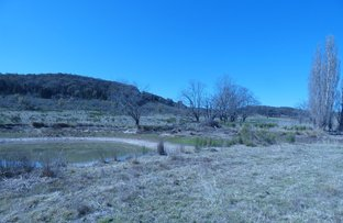 Picture of Lot 1  Goldfields lane , Taylors Flat NSW 2586