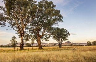 Picture of 37 Broadhead Road, Mudgee NSW 2850