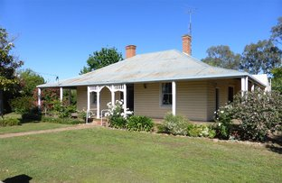 Picture of 167 Albury Street, Holbrook NSW 2644