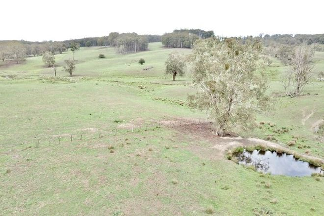 Picture of 12 Healey, NIANGALA NSW 2354
