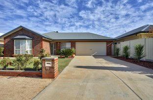 Picture of 11 Trevelyan Street, Barmera SA 5345