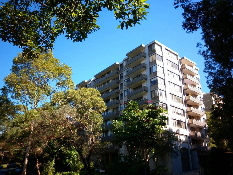 56/7 Jersey Road, Artarmon NSW 2064, Image 0
