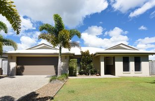 Picture of 19 Flindersia Place, Mountain Creek QLD 4557
