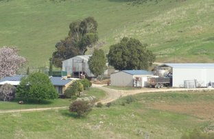 Picture of 270 West Gilmore Road, Gilmore NSW 2720