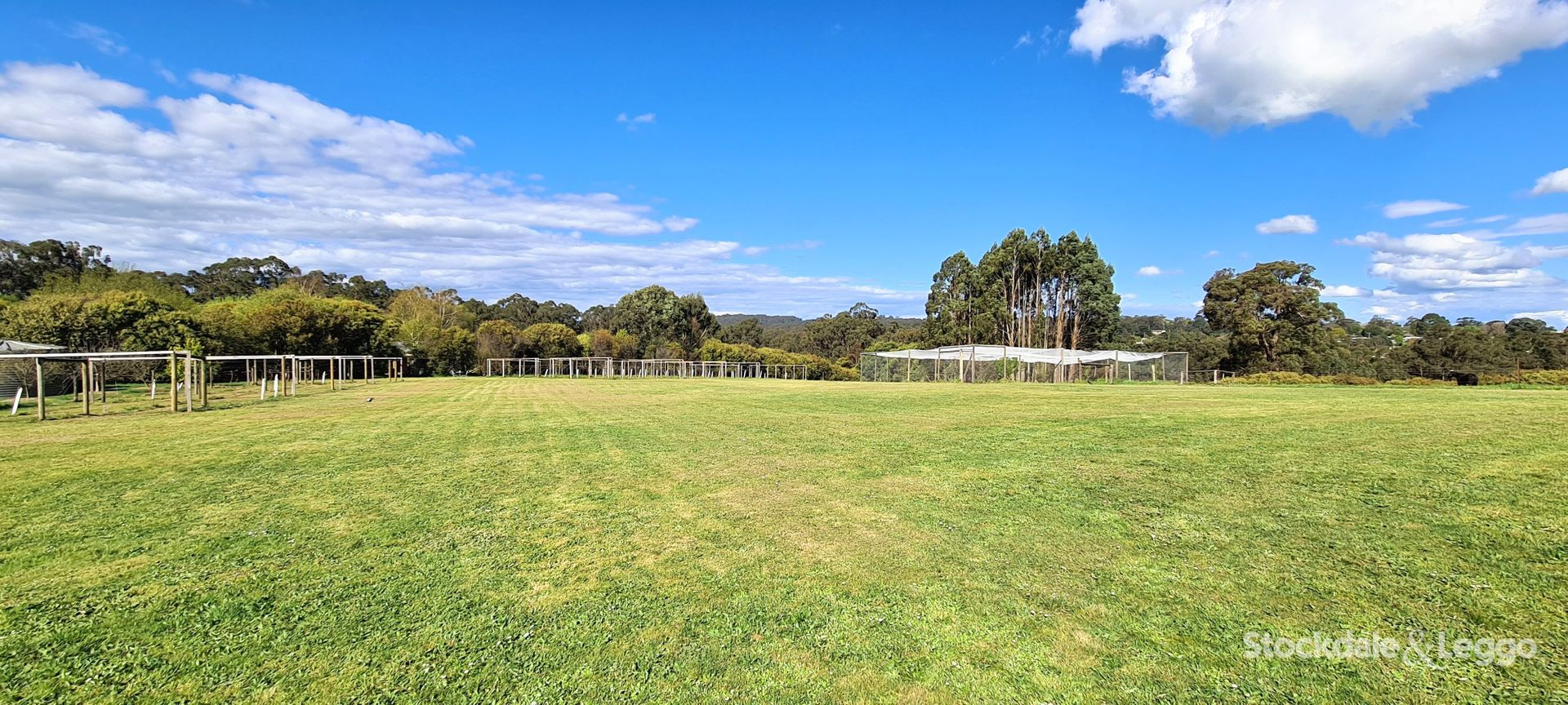 54 Wells Road, Mirboo North VIC 3871, Image 0