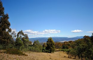 Picture of PID 5818207 Braslins Road, Black Hills TAS 7140