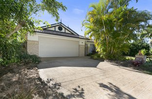 Picture of 15 Tedford Drive, Tewantin QLD 4565