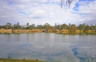 Picture of Lot 194 Scotts Creek, Morgan SA 5320