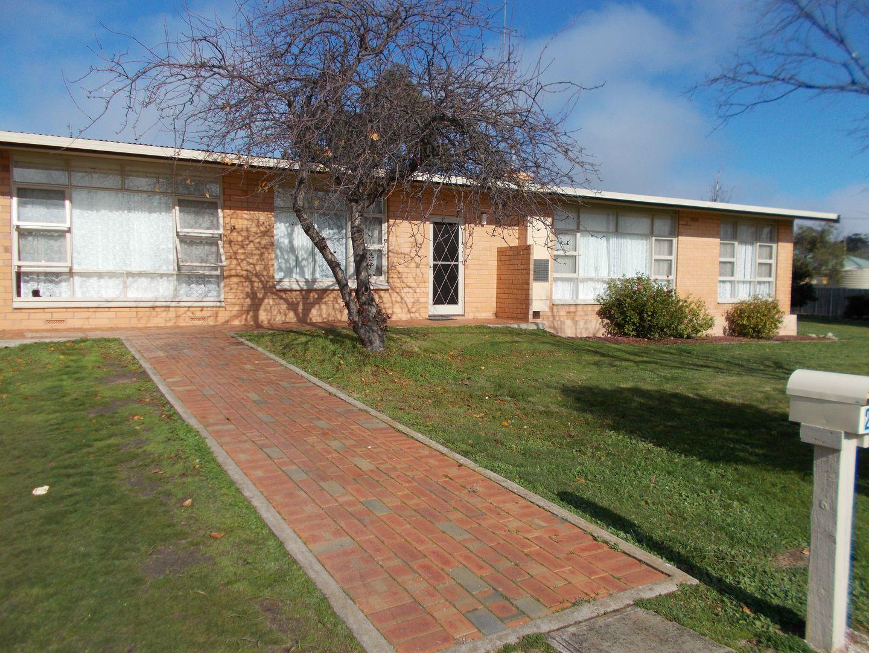 24 Albert Pde, Bordertown SA 5268, Image 0