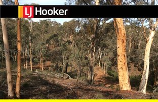 Picture of 129 Wandoo Circle, Toodyay WA 6566