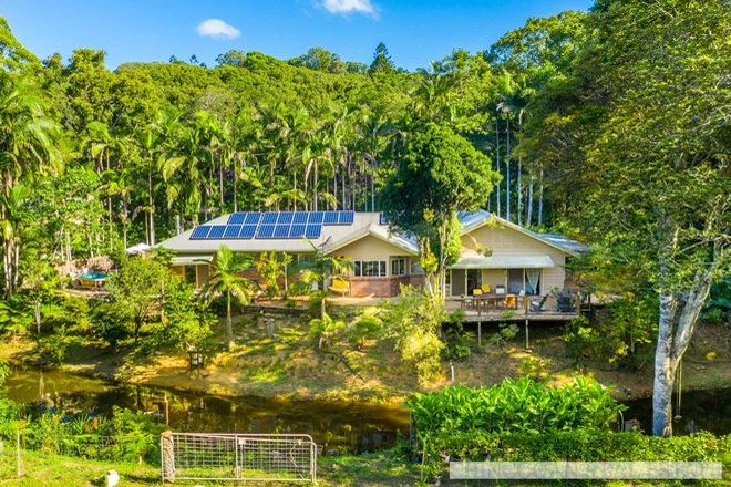 Picture of 240 Crabbes Creek Road, CRABBES CREEK NSW 2483