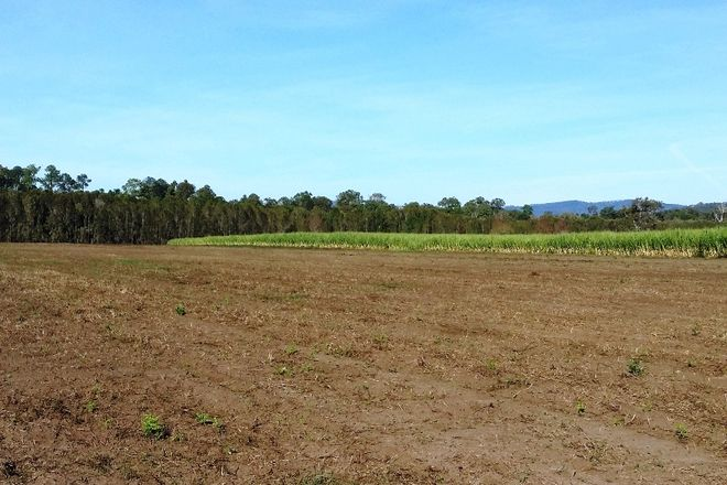 Picture of 496 Norwell Road, NORWELL QLD 4208