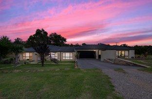 Picture of 379 Bobs Range Road, Orangeville NSW 2570