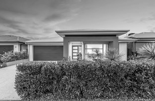 Picture of 7 Lipizzan Way, Clyde North VIC 3978