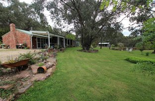 Picture of 2777 Mansfield Whitfield Rd, Tolmie VIC 3723
