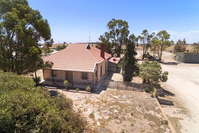 Picture of 93 Smoky Bay Road, SMOKY BAY SA 5680