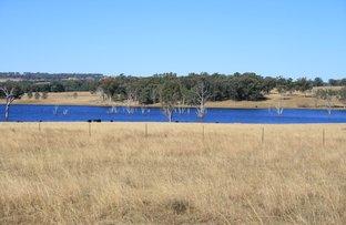 1789 Copeton Dam Road, Inverell NSW 2360