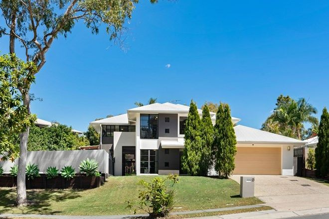 Picture of 13 Edenbrooke Drive, SINNAMON PARK QLD 4073