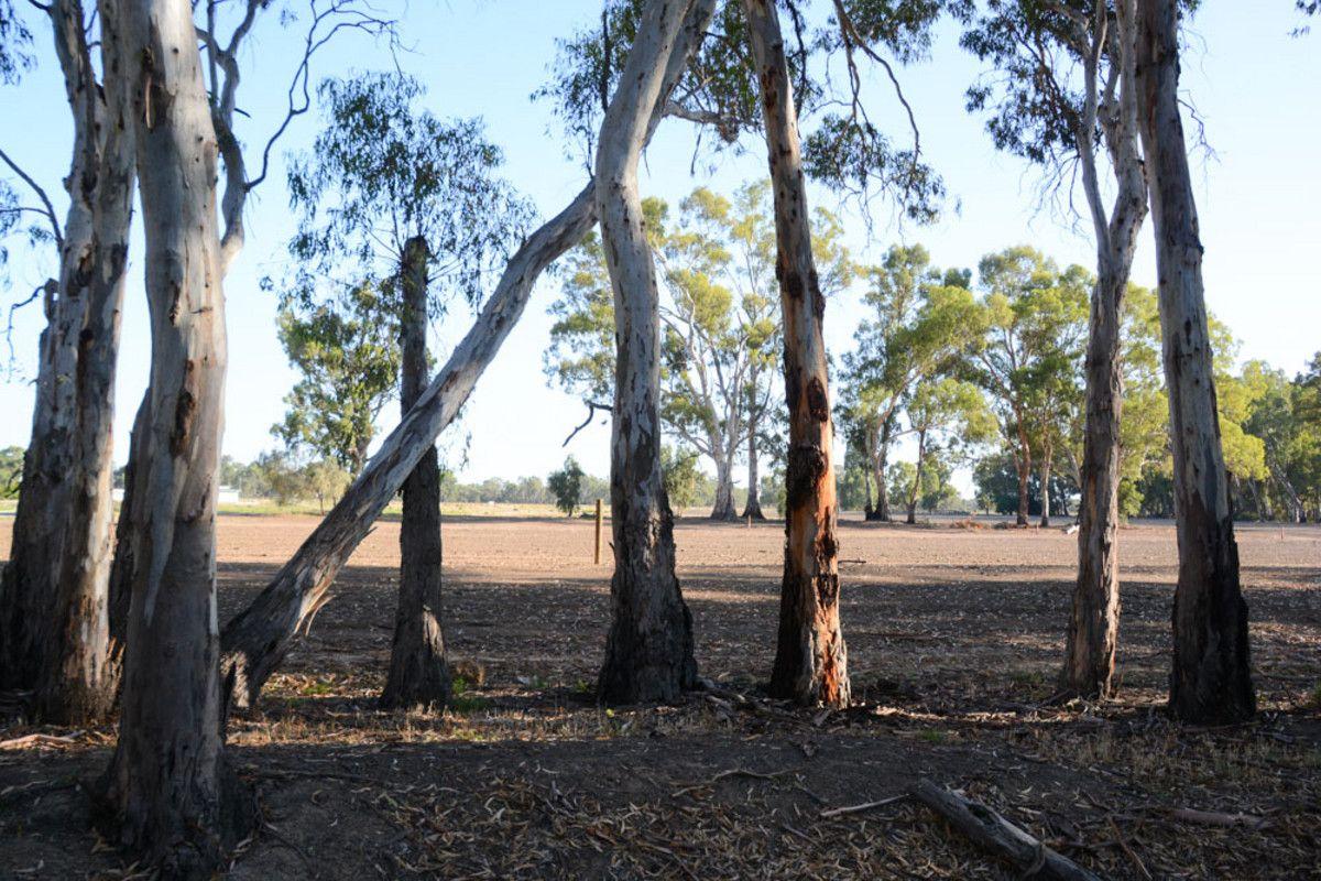 """River Estate"" Riverview Drive, Barham NSW 2732, Image 2"