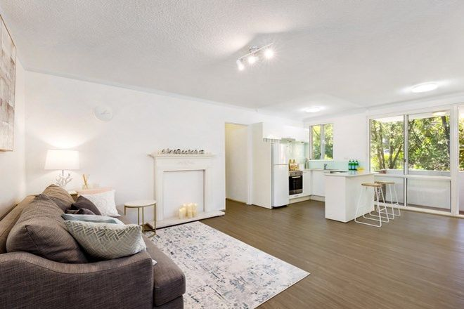 Picture of 4/54 Epping Road, LANE COVE NSW 2066