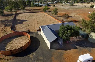 Picture of 14 Carlyon Ave, Gunnedah NSW 2380